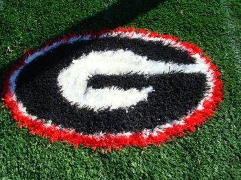 Georgia Bulldogs 2 Inch Pile Turf Rug